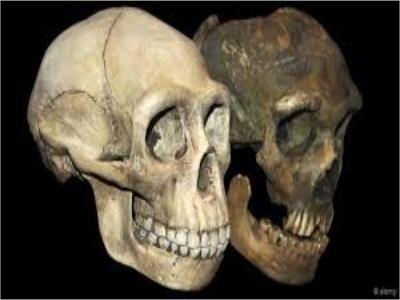 کشف فسیل ۳۰۰ هزار ساله متعلق به گونه «هومو ساپین»