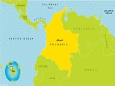 تولید طلا، نیکل و زغالسنگ در کلمبیا طی سه ماهه دوم سال جاری میلادی با کاهش همراه بود.