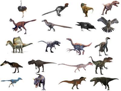 کشف یکی از بزرگ ترین گونه های ناشناخته دایناسور توسط دانشمندان